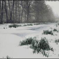 Зима :: DR photopehota