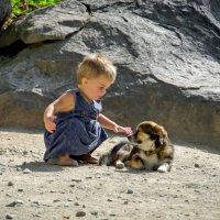 о маленькой дружбе :: Ирэна Мазакина