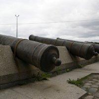 крепость Ниеншанц :: Алексей Кудрявцев