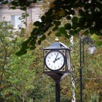 уличные часы :: Дарья Коротышева