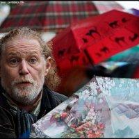 Зонтики :: DR photopehota