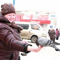 Голубь на руке. :: Вера Юшкова