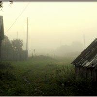 туман :: Вячеслав Завражнов