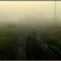 туман -2 :: Вячеслав Завражнов