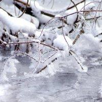 Зима :: Наталья Мельникова