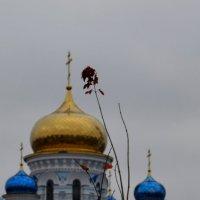 . :: Владимир Дмитриев