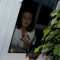 Психи лезут через окна :: Светлана Кудряшова