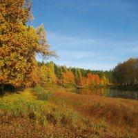 Осень :: Альберт Беляев