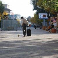 Собака всегда верна человеку :: Болат Срымов