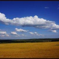 в полете :: павел Труханов
