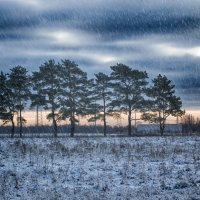 Погода хмурится :: Антон Лебедев