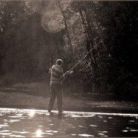 Ловись рыбка большая и маленькая :: Влад Никишин
