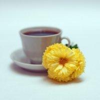 Кофе и цветок :: Viktor Vishnevskiy
