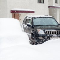 В Новосибирске снежно! :: Антон Кутлубаев