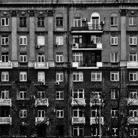 соты :: Яков Павлов