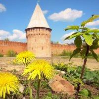 Весна у древних стен. :: Игорь