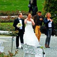 был жених серьезен очень, а невеста... :: Александр Корчемный