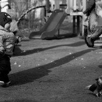 Стойте, стойте! я ж вам хлебушка дать хочу! :: Ара Маргарян