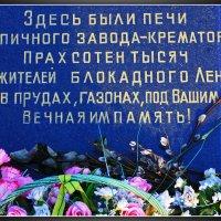 Памятная Доска на Аллее Памяти.Санкт-Петербург. :: Александр Лейкум