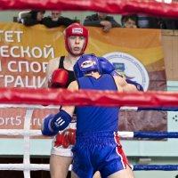 Бой! :: Александр Павленко