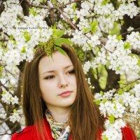 Ксения :: Анастасия Светлова