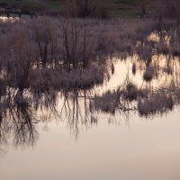 в 6 утра на озере :: Арсений Корицкий