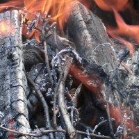 пламя :: МИХАИЛ КАТАРЖИН