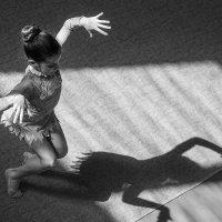 игра с тенью :: Василий Либко