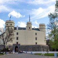 Средневековый замок  Орлик-над-Влтавой находится в 80 км от Праги. :: Надежда