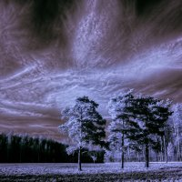 монохром инфракрасный спектр :: Аркадий Алямовский