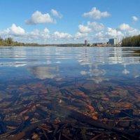 Утро на Суздальском озере! :: Юрий Цыплятников