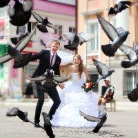 )Любовь и голуби!) :: Алла Кочкомазова