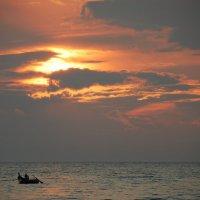 Рыбалка на закате :: Наталья Покацкая