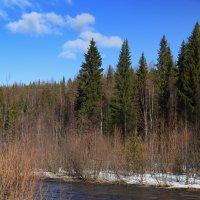 Весенний пейзаж 5 :: Сергей Белко