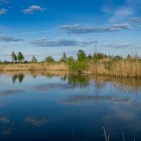 Колдовское озеро... :: Олег Козлов