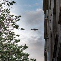 Самолет :: Ирина Краснобрижая