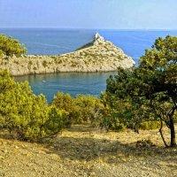 Новый Свет. Крым :: Андрей Зелёный
