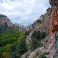 Чернореченский каньон. Крым :: Владимир Клюев