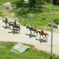 люди, кони :: Александр .