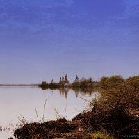 Пейзаж у озера :: Анастасия Зубарева