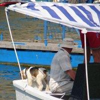 Много в лодке, не считая собаки :: Юлия Грозенко