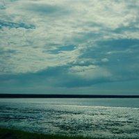 Озеро Маныч :: Маргарита Микаелян