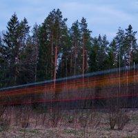 Вечерний экспресс. :: Александр Максимов