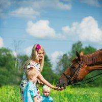 Лето :: Светлана Павлова