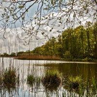 Озеро Чайка :: Владимир Самсонов