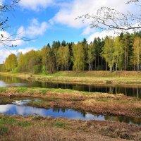 Раздвоение реки :: Андрей Куприянов