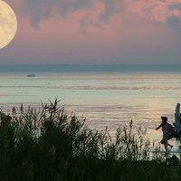 коллаж - на заливе :: Евгений Фролов
