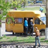 Детский школьный автобус :: Татьяна Олифер