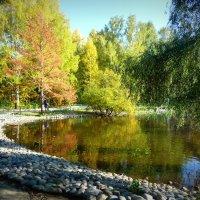Озеро. Новосибирский зоопарк :: Ольга Кондратова