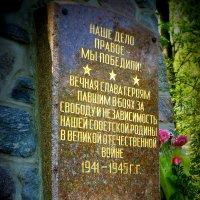 Вечная память... :: Владимир Секерко